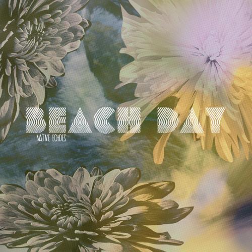 rp_kr117-beach-day-native-echoes.jpg